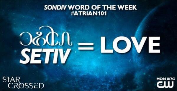 Sondiv 101 Love