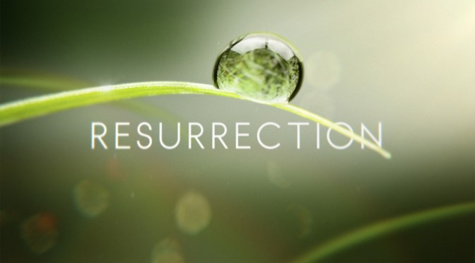 'Resurrection: Torn Apart'