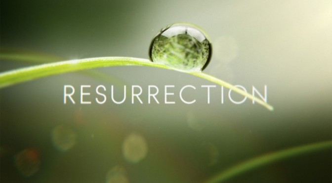"Angie's review of ""Resurrection"""